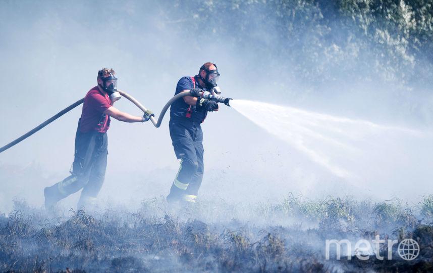 Пожар в Германии. Фото AFP