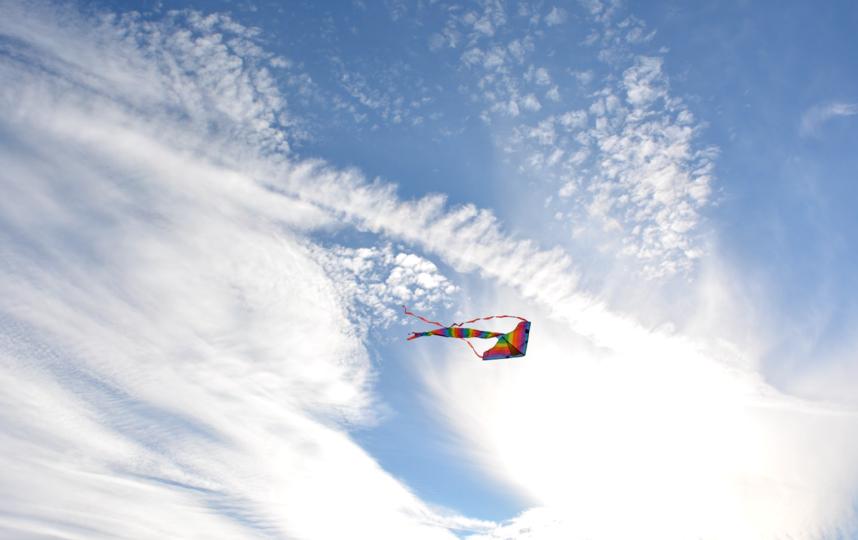 В Петербурге отменили фестиваль воздушных змеев из-за дождя и сильного ветра. Фото pixabay.com
