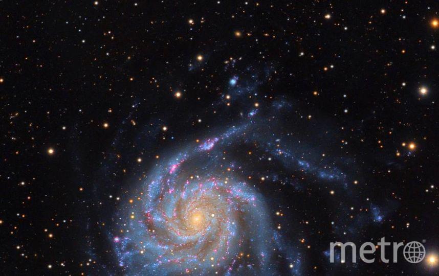 Спиральная галактика в созвездии Большая Медведица. Фото Скриншот Instagram/cosmic.speck