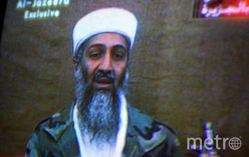 Семья Усамы бен Ладена дала интервью. Фото Getty
