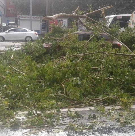 Ураган в Тюмени. Фото instagram/ben__gun