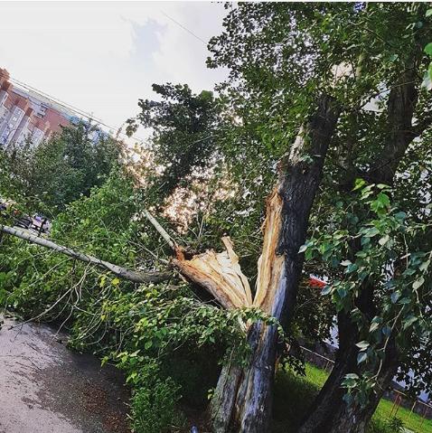 Ураган в Тюмени. Фото instagram/aleksandrzorin72