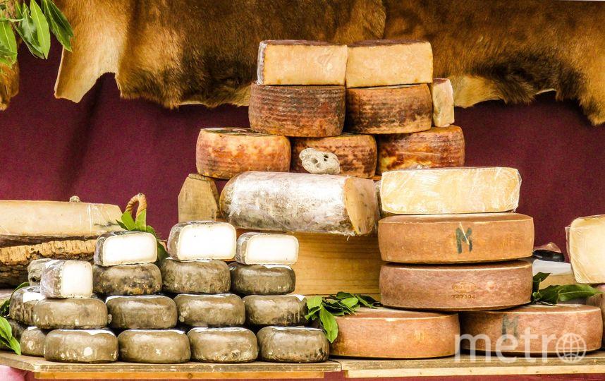 Самый старый сыр в мире оказался полон древних бактерий. Фото Pixabay.com