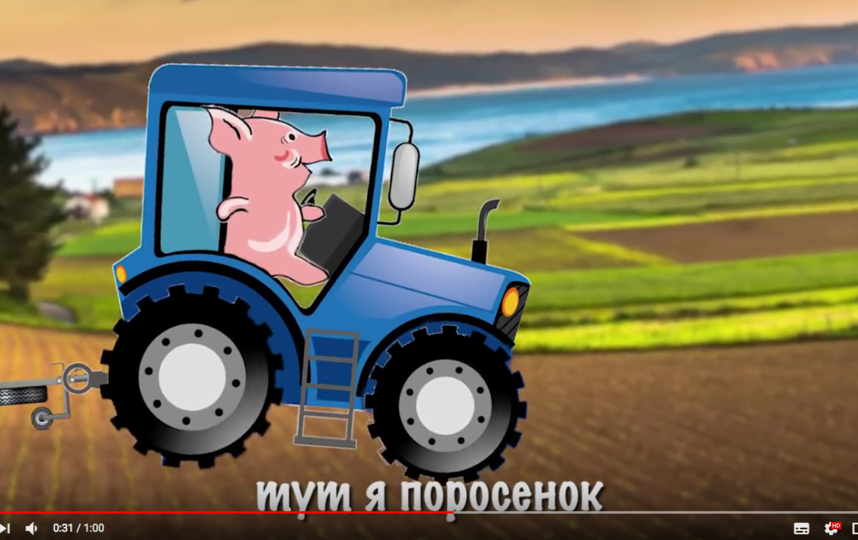 Кадры из клипа про поросенка-хабаровчанина. Фото Скриншот Youtube