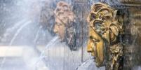 В Петербурге обещают прохладу и дожди на всю неделю