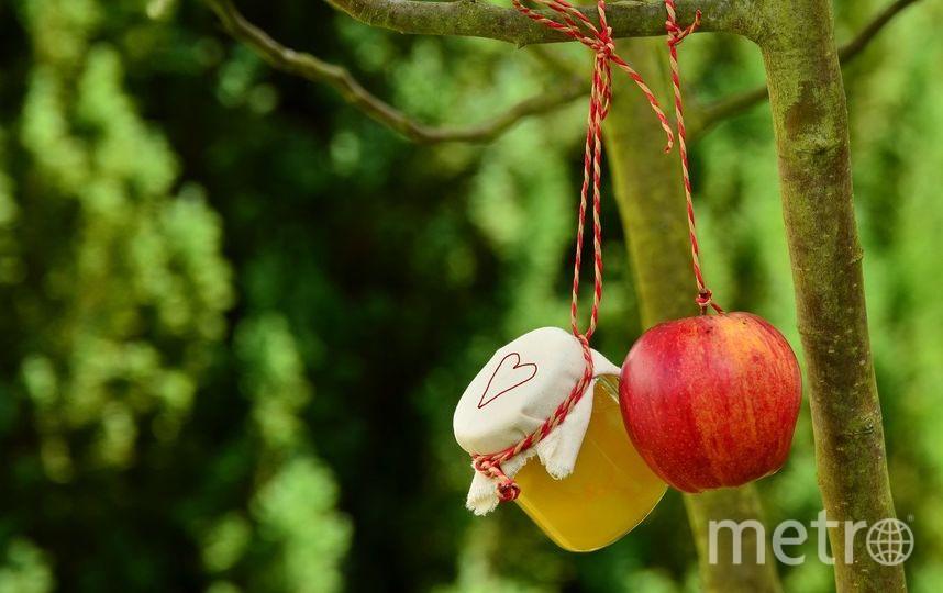Православные отметили Преображение Господне - Яблочный Спас. Фото Pixabay.com