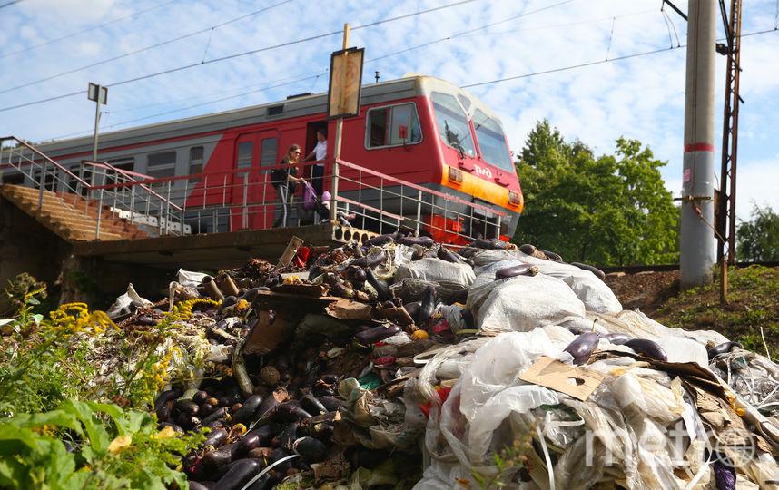 """Рядом с платформой """"Битца"""" появляются горы овощей и гипсокартона. Фото Василий Кузьмичёнок"""