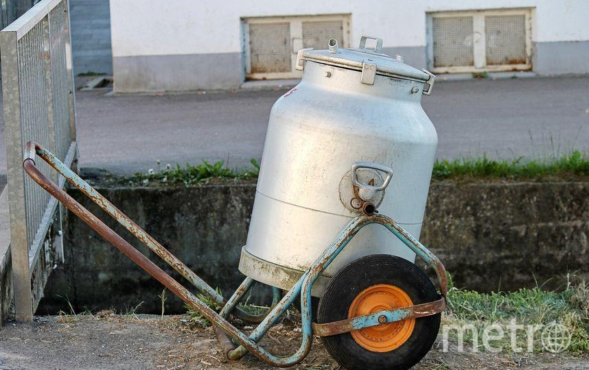 Условия и длительность хранения молока зависят от способа обработки. Фото Pixabay