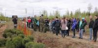 Движение ЭКА объявляет сбор волонтеров для посадки деревьев