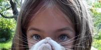 Новый конкурс Metro: У меня есть борода... из собаки и кота