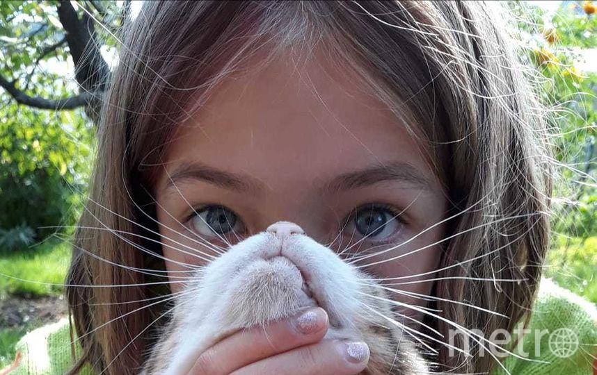 На снимке моя дочь Богдана, кличка кошки Подушка. Фото Юлия Р.