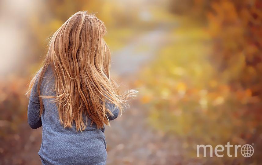 Потерявшуюся две недели назад в ямальской тундре девочку нашли живой. Фото Pixabay.com