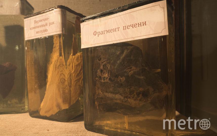 """В анатомическом театре. Фото Святослав Акимов, """"Metro"""""""