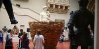 В Пушкинском музее завелись гнёзда