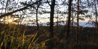 Открывая Ленобласть: встретить рассвет на скале, посетить маяк и увидеть Онежское озеро