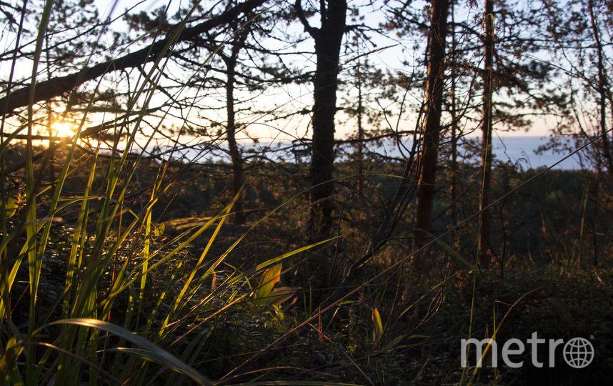 """Рассвет в Щелейских скалах. Фото Анна Тихонова, """"Metro"""""""