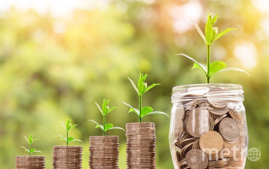 Средняя зарплата в Петербурге превысила 59 тыс. рублей. Фото Pixabay.com