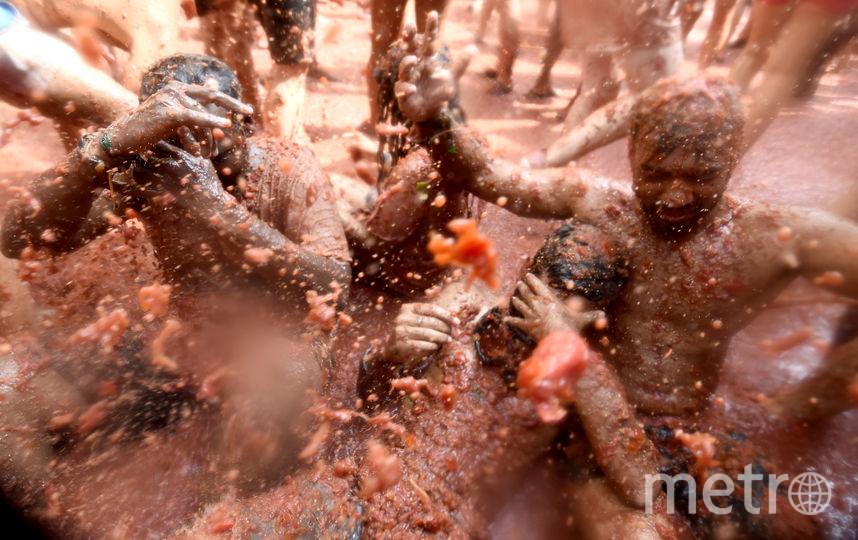 "На днях в Испании прошёл фестиваль битвы помидорами – ""Томатина"". Фото AFP"