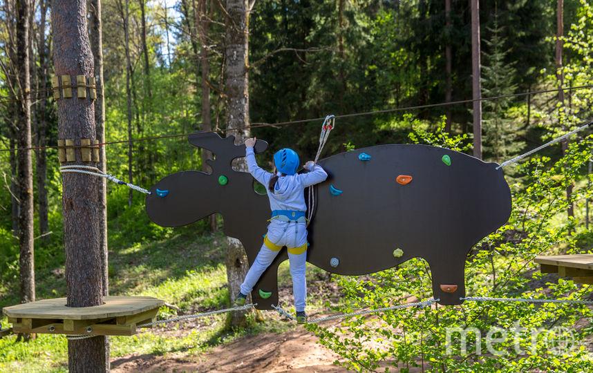 """Веревочный парк, горнолыжный курорт в Коробицыно. Фото Михаил Боярсков., """"Metro"""""""