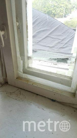 """Фото из общежитий. Фото предоставлены студентами, """"Metro"""""""