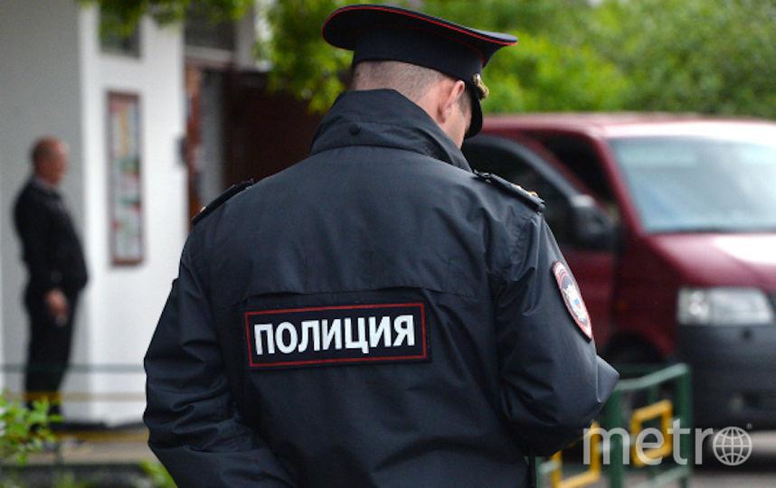 На несогласованной акции нарушитель оказал сопротивление сотруднику полиции. Фото РИА Новости