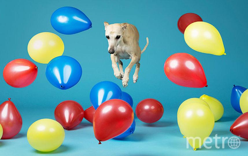 Скоростное лопание шариков. Фото Предоставлено организаторами