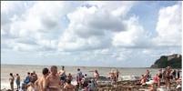 Почти джунгли: удивительные фото пляжа под Геленджиком обсуждают в Сети
