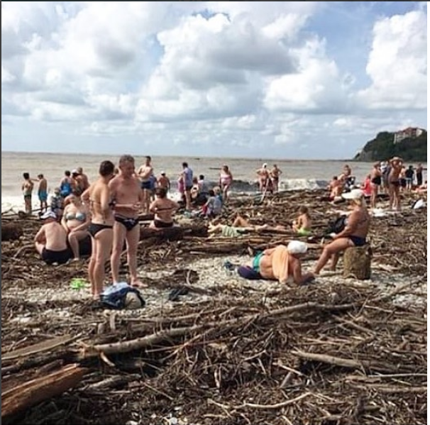 Пляж завалило ветками. Фото https://www.instagram.com/nina.gostevoidombaunti/