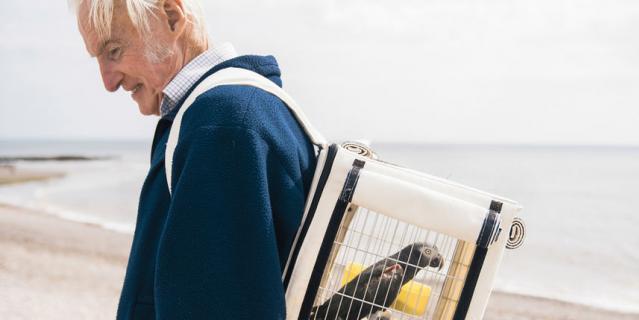 Попугай Роя на реабилитации. Фотограф Александр Флемин.