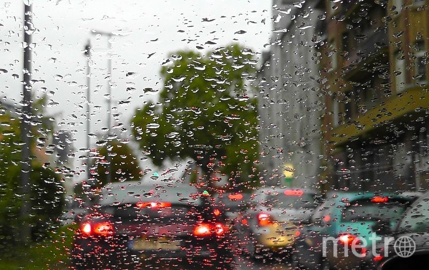 одной из самых популярных вакансий Петербурга стала позиция водителя. Фото https://pixabay.com