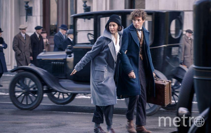 """Главный герой фильма """"Фантастические твари и где они обитают"""" Ньют Саламандер хранил в своём чемодане огромное количество магических зверей. Фото кадр из фильма, kinopoisk.ru"""