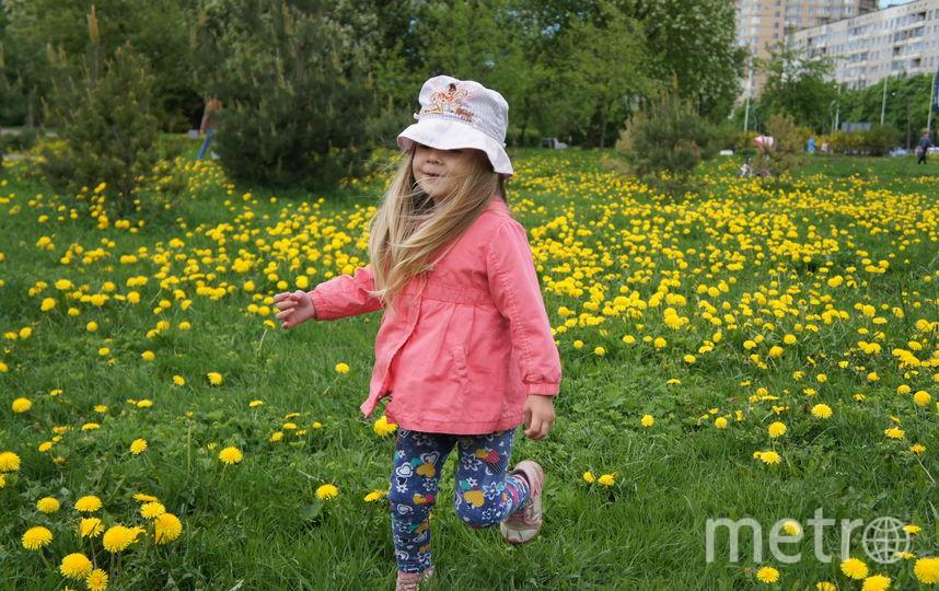 """Милослава 3 года 2 мес. Любит лето, солнце, горы, цветы... Я Вам отправил предыдущее письмо, где сделал объединенные фото, если так нельзя, то вот фото по отдельности. Очень хотим выиграть кашу, потому что Геркулес - это наша семейная традиция по утрам. Фото Сергей Олино, """"Metro"""""""