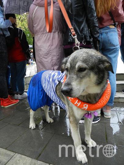 Веня в костюме боцмана. Фото Юлия Долгова., Предоставлено организаторами