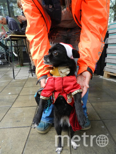 Шуга в костюме Деда Мороза. Фото Юлия Долгова., Предоставлено организаторами