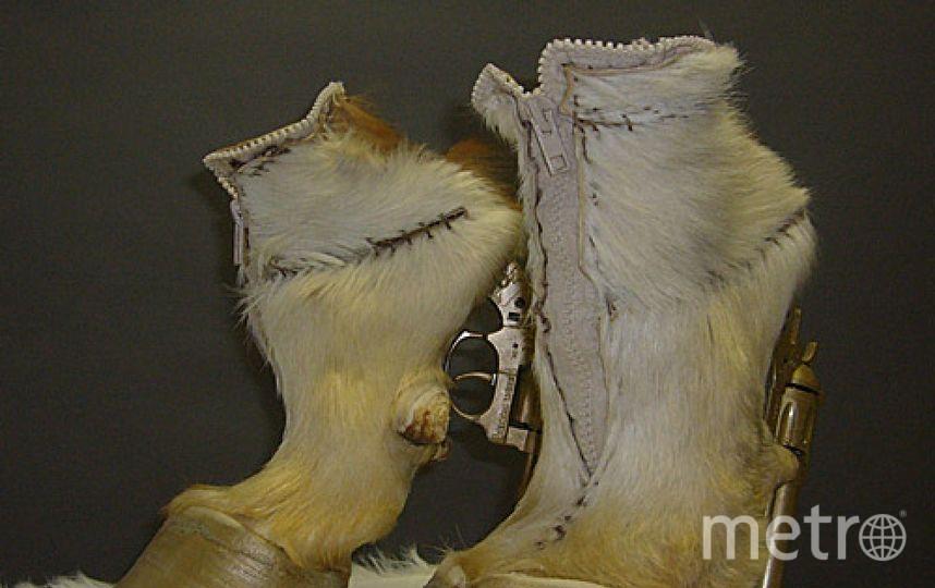 Таксономическая обувь Айрис Шиферстейн. Фото Getty