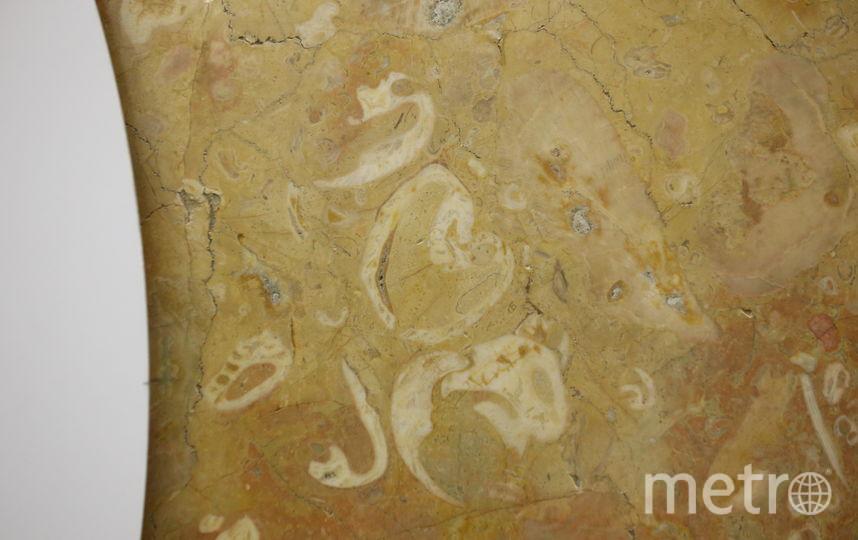 Аэропорт. 1. Колониальные кораллы можно найти со стороны выхода на Аэропортную улицу в стене справа от карты города. Фото Василий Кузьмичёнок