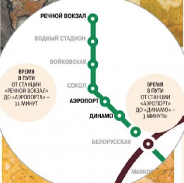 """В московской подземке обитают моллюски и кораллы. Фото """"Metro"""""""