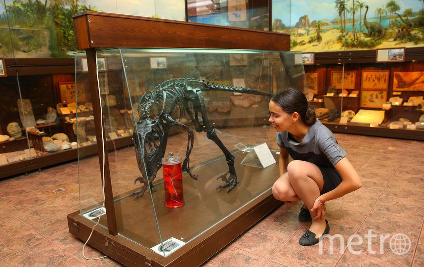 Художник предлагает зрителям самим решить, нападает ли целурозавр на колбу со скульптурой или охраняет её. Фото Василий Кузьмичёнок