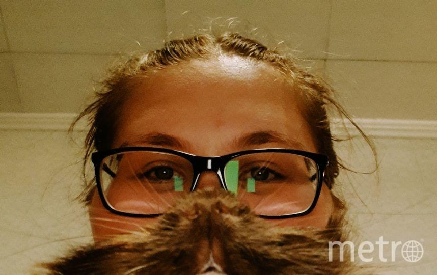 Меня зовут Екатерина, морскую свинку зовут Йен. Фото Екатерина