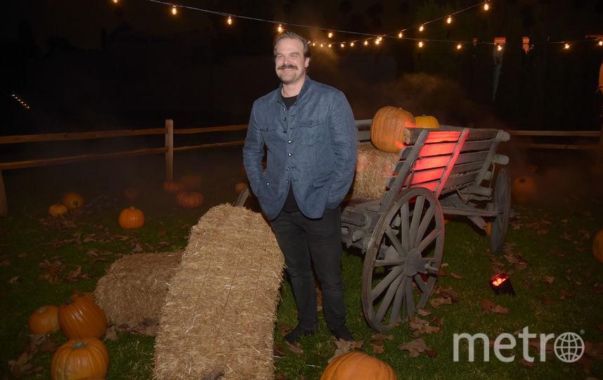 Дэвид Харбор провёл свадьбу за ретвиты. Фото Getty