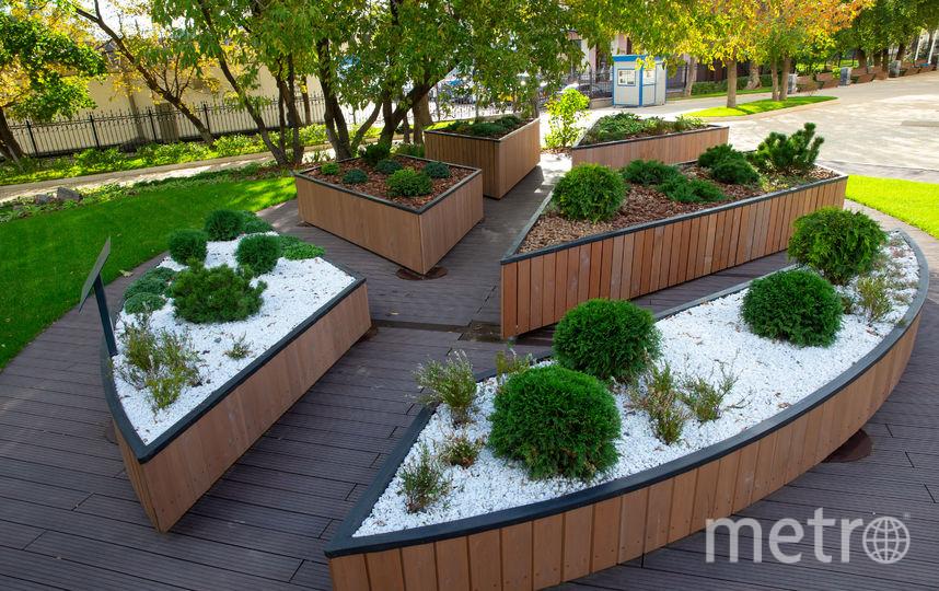 """В Москве откроется сад """"Шестое чувство"""" для людей с ограниченными возможностями. Фото Василий Кузьмичёнок"""