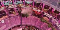 Флорариум парка