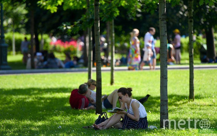 В Москве 20 сентября ожидается жара, которой не было 81 год. Фото Василий Кузьмичёнок