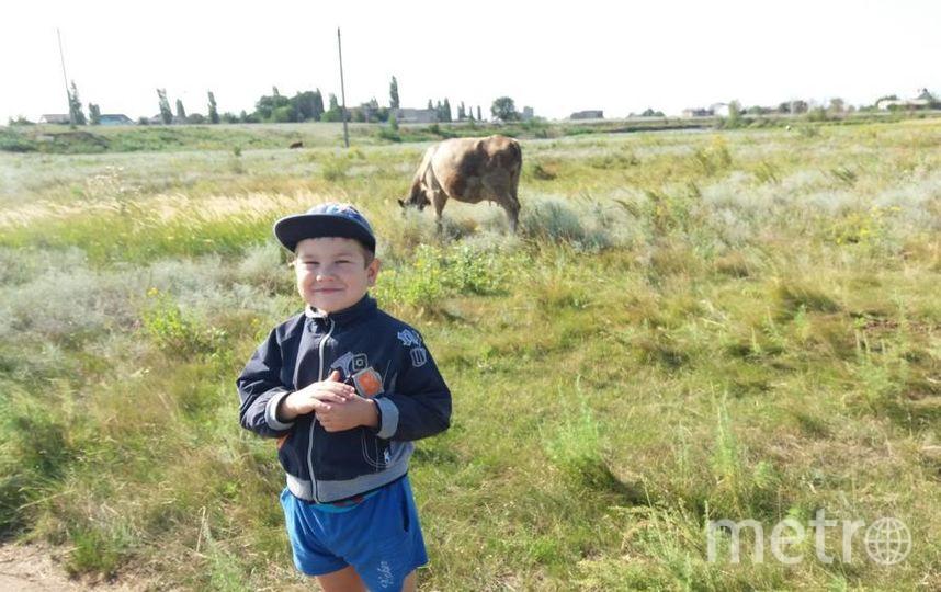 """Фото моего сына, отдыхавшего этим летом в селе у бабушки этим летом. Фото Виктор, """"Metro"""""""