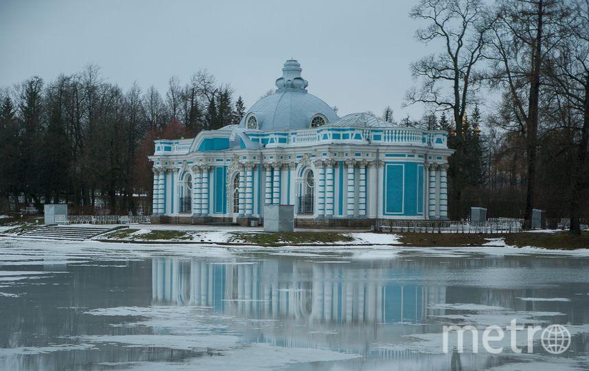 Зима в Петербурге будет холоднее прошлогодней. Фото Pixabay