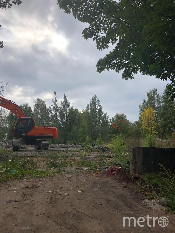 В Петербурге начали вывоз свалки возле парка Сосновка. Фото предоставлено активистами