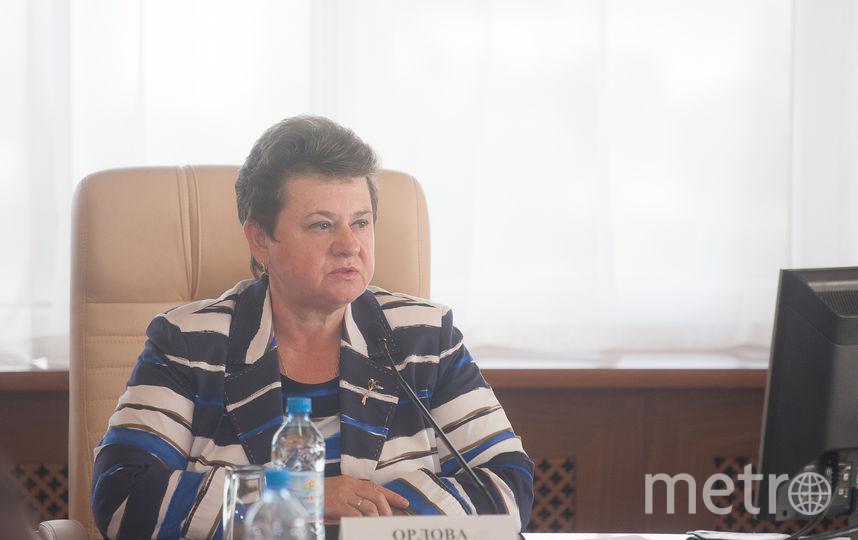 Светлана Орлова. Фото https://avo.ru