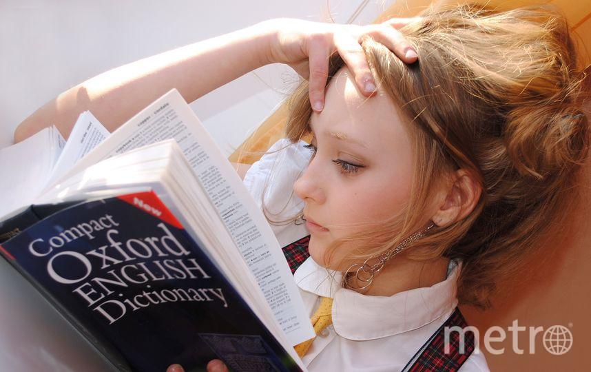 При поступлении в зарубежный ВУЗ главное – терпение. Фото pixabay.com