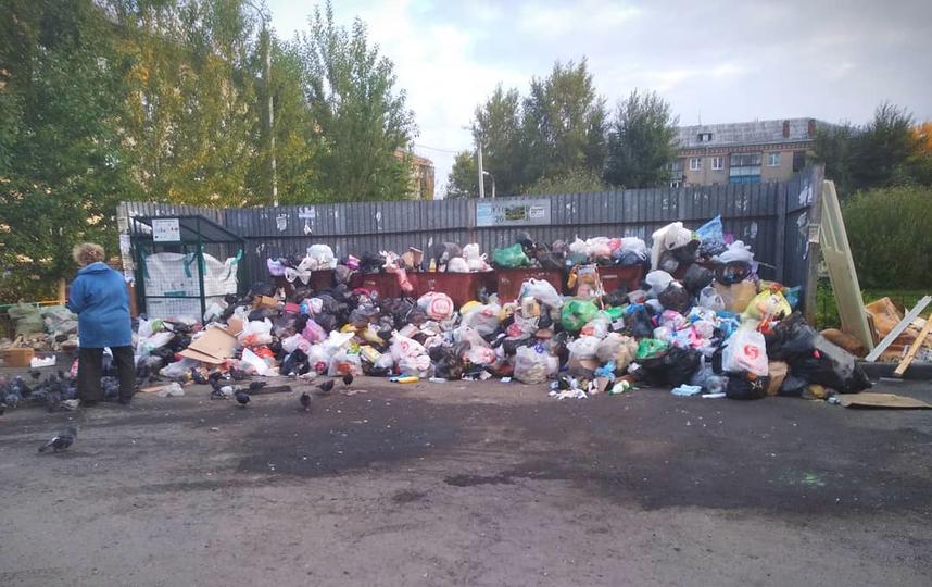 В Челябинске больше недели не вывозят мусор. Фото Предоставлено организаторами