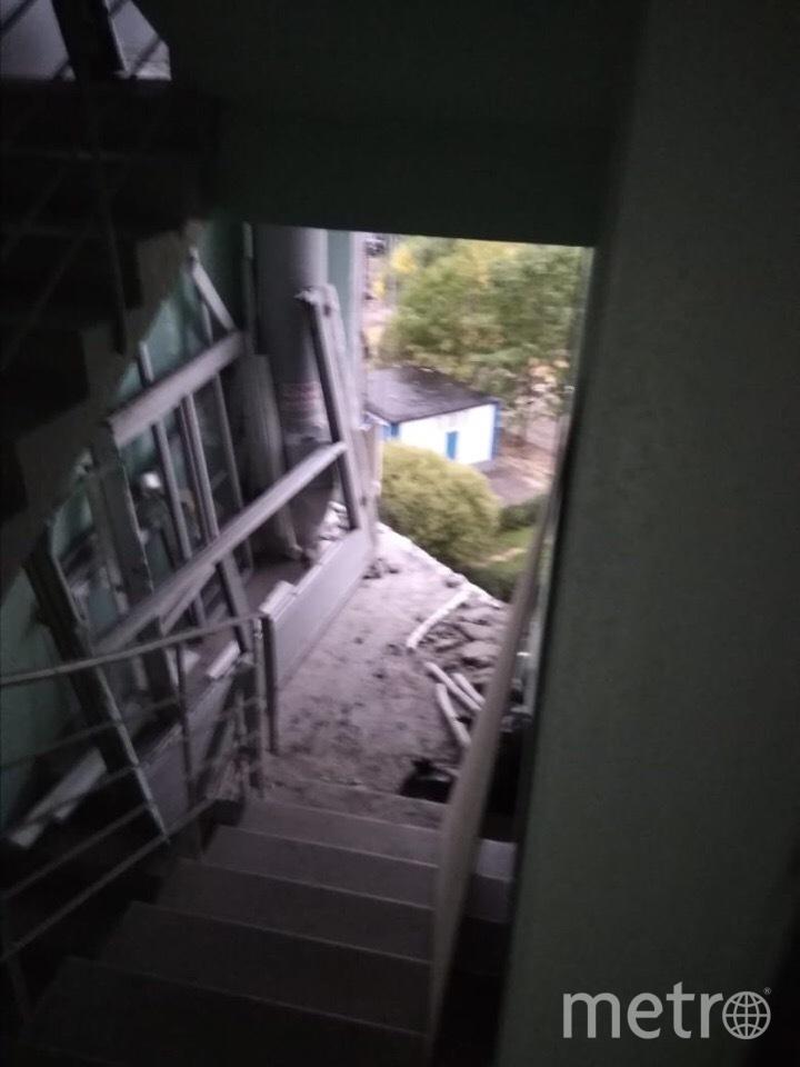 Фото сделано 2 сентября на шестом этаже в 8-м подъезде дома. Фото Из личного архива жильцов дома по адресу ул. Братиславская, 8к2